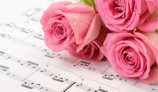 beautiful pink roses on sheet music